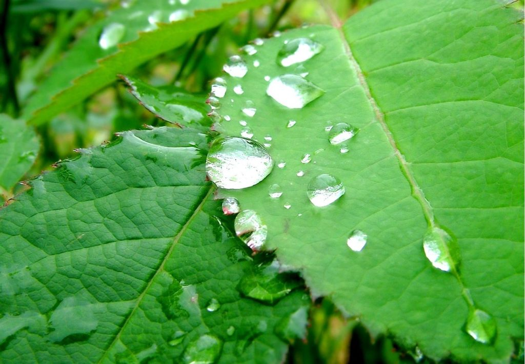anticalcaire antitartre écologique et économique au CO2