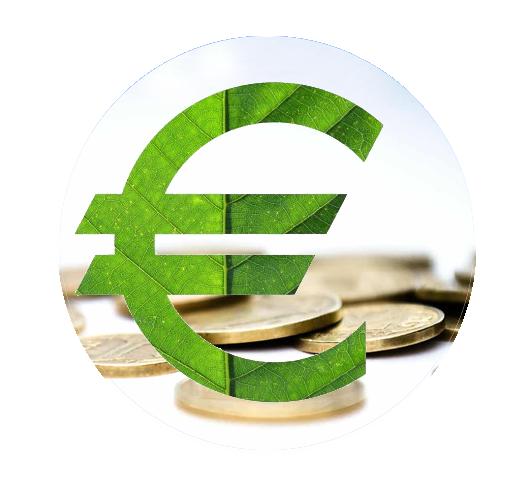 euro écologique pièces de monnaies